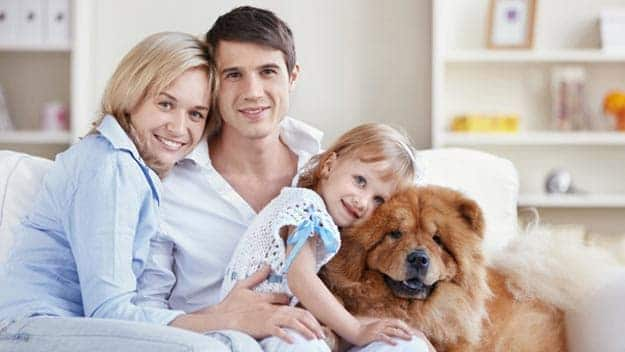Wills & Trusts dog-young-family Direct Wills Bracknell